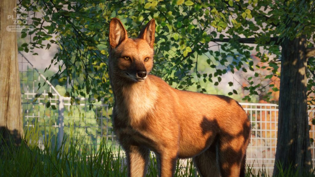 planet zoo dhoul