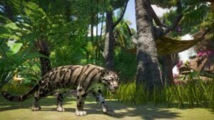 planet zoo levhart