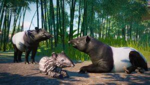 planet zoo tapíři