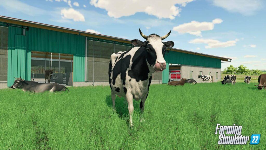 Farming Simulator 22 - kráva