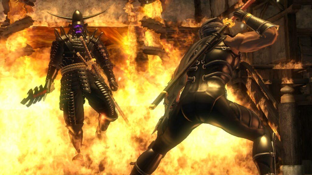 Ninja Gaiden fight