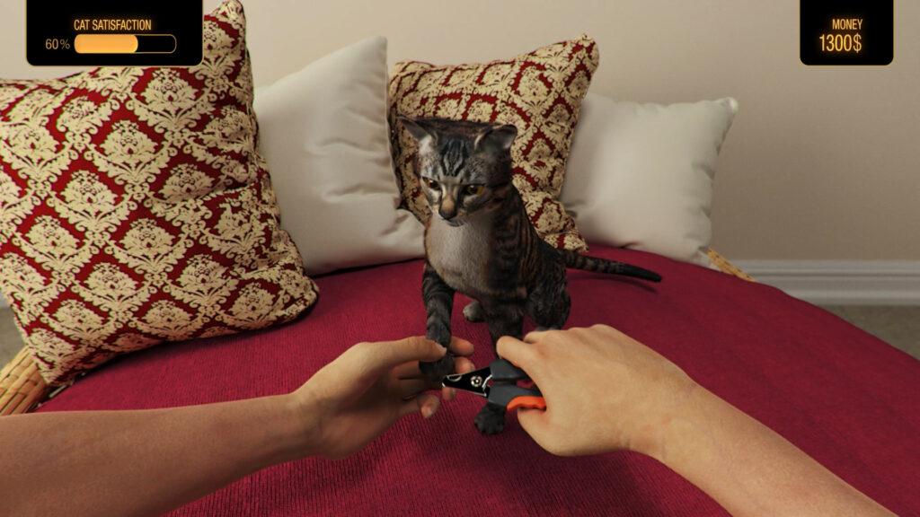 Pets Hotel cat